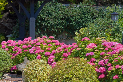 Landscaping in Whitehall OH