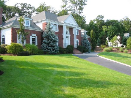 Lawn Care in Westerville OH